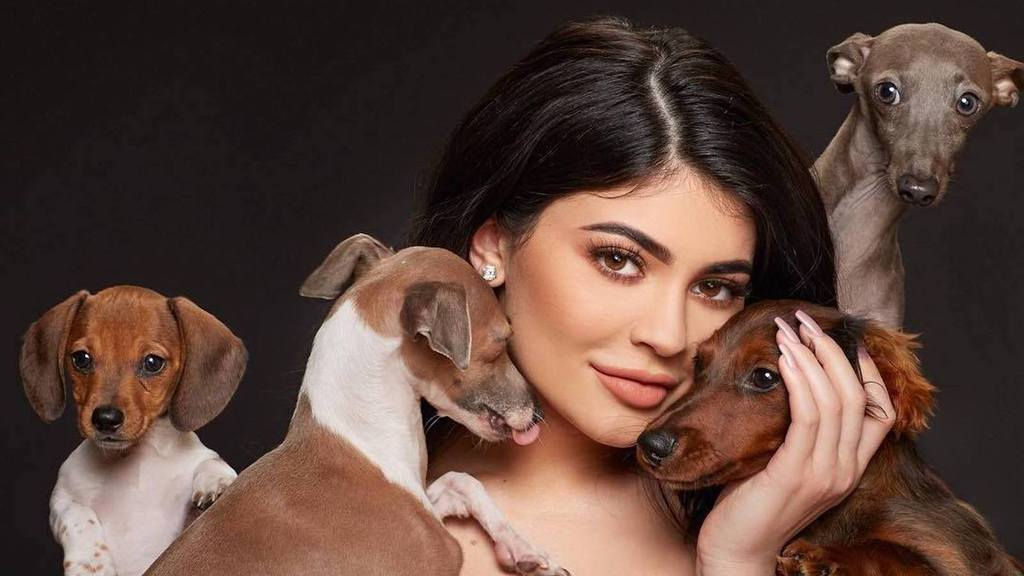 Kylie Jenner and her dogs pose for a photoshoot.
