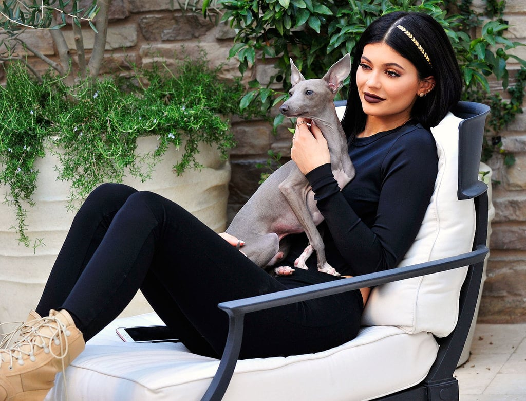 Kylie Jenner and her first Italian Greyhound, Norman.